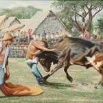 z Esto es un jocheo de toros, como se acostumbraba en el campo, cuando había fiesta.