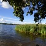 Vista a la laguna Guapomó